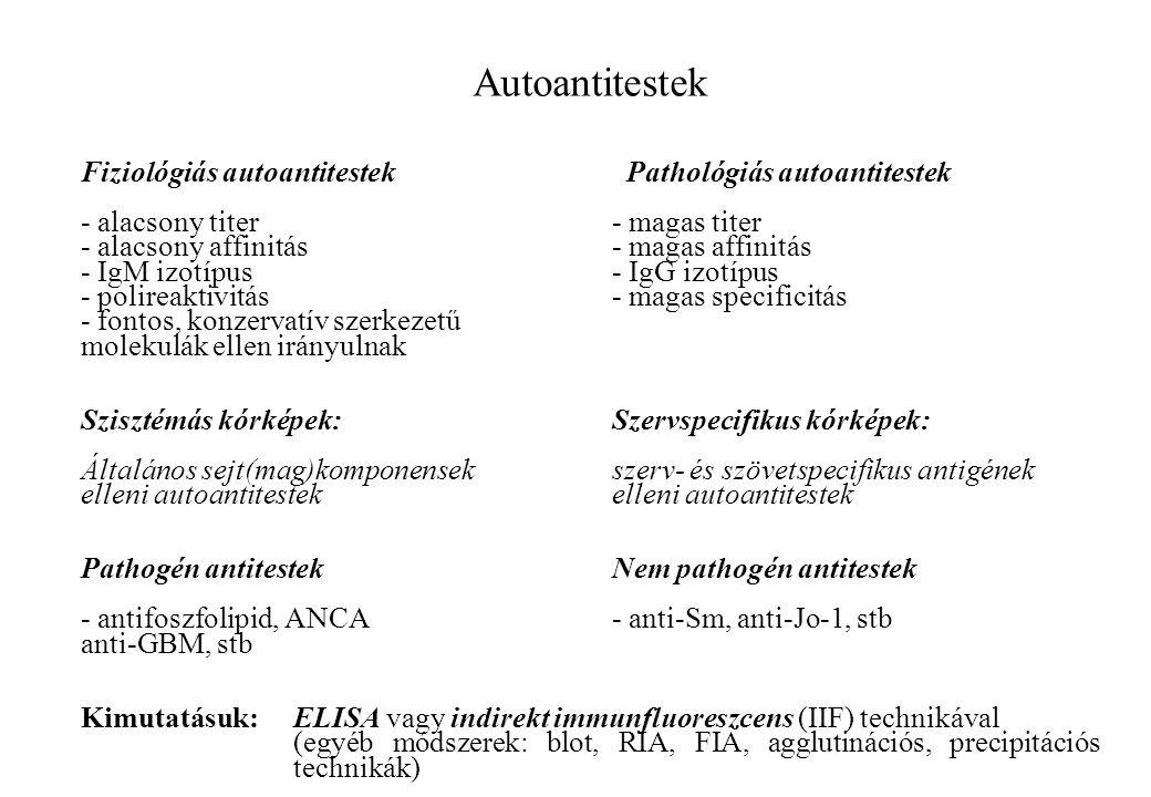 Autoantitestek Fiziológiás autoantitestek Pathológiás autoantitestek