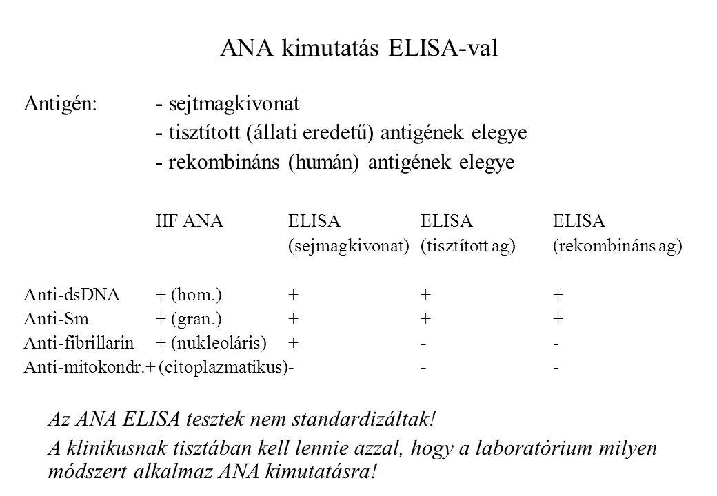 ANA kimutatás ELISA-val