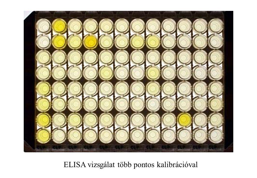 ELISA vizsgálat több pontos kalibrációval