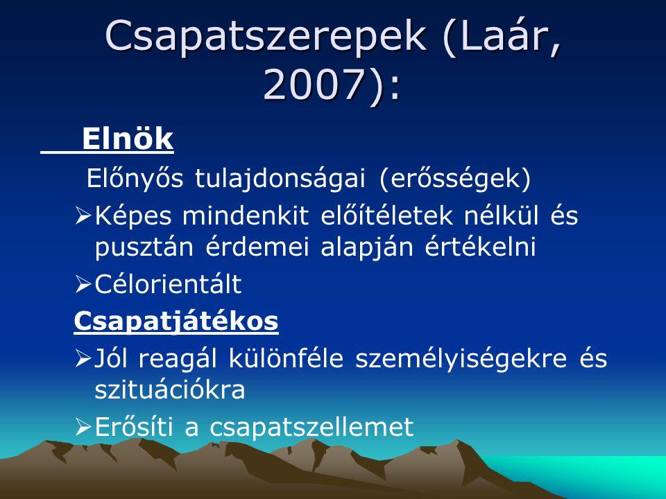 Csapatszerepek (Laár, 2007):