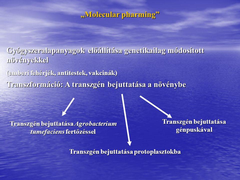 Gyógyszeralapanyagok előállítása genetikailag módosított növényekkel