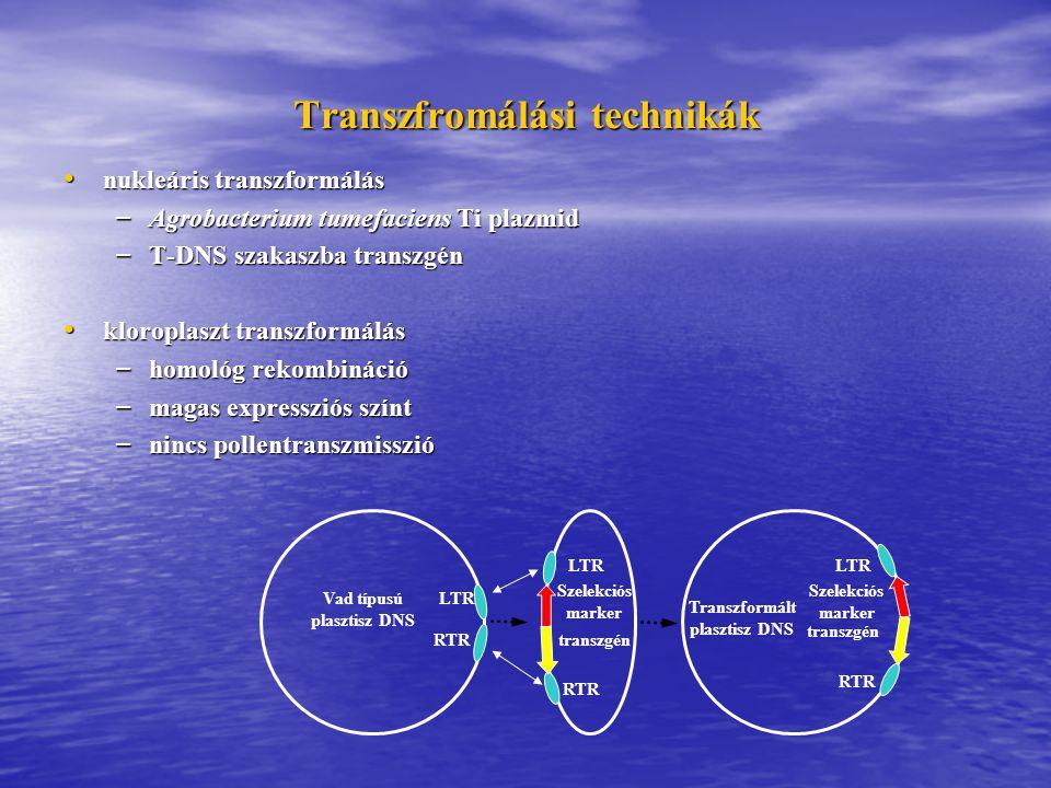Transzfromálási technikák