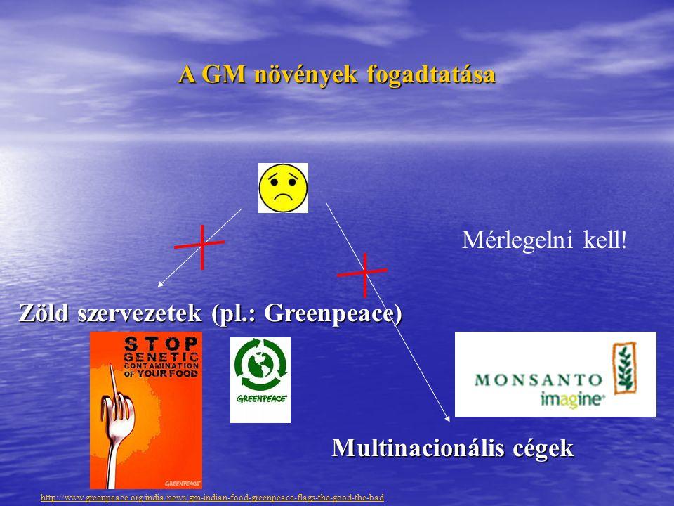A GM növények fogadtatása Multinacionális cégek