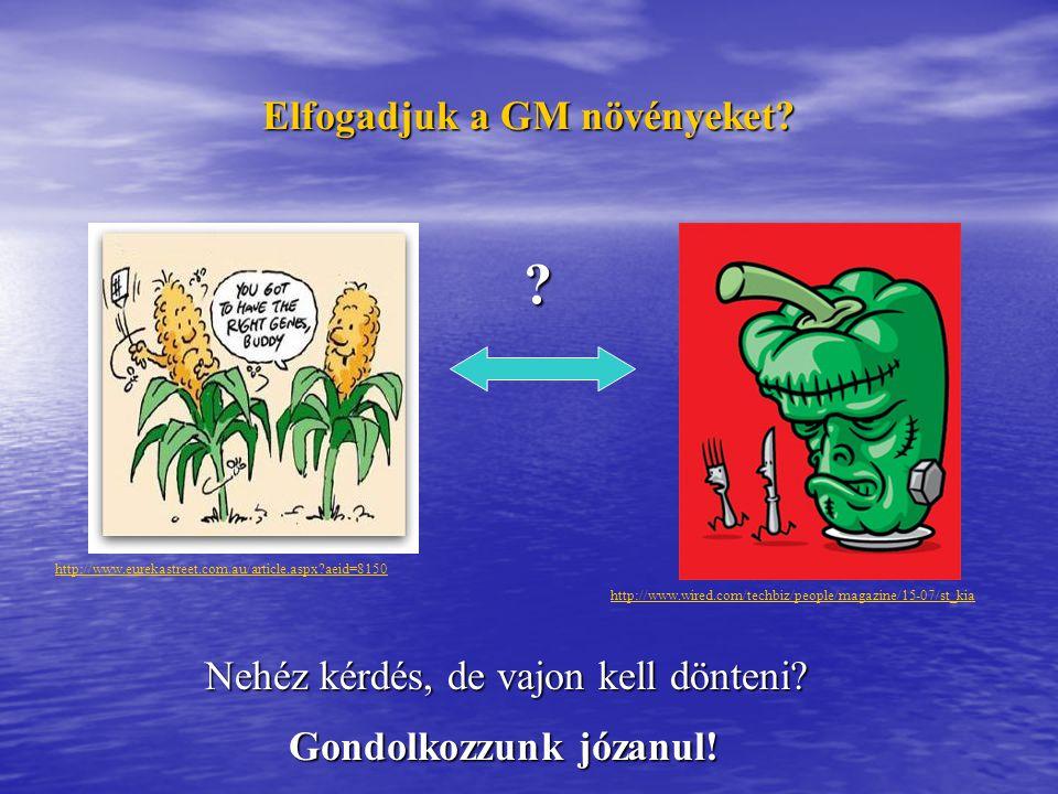 Elfogadjuk a GM növényeket Gondolkozzunk józanul!