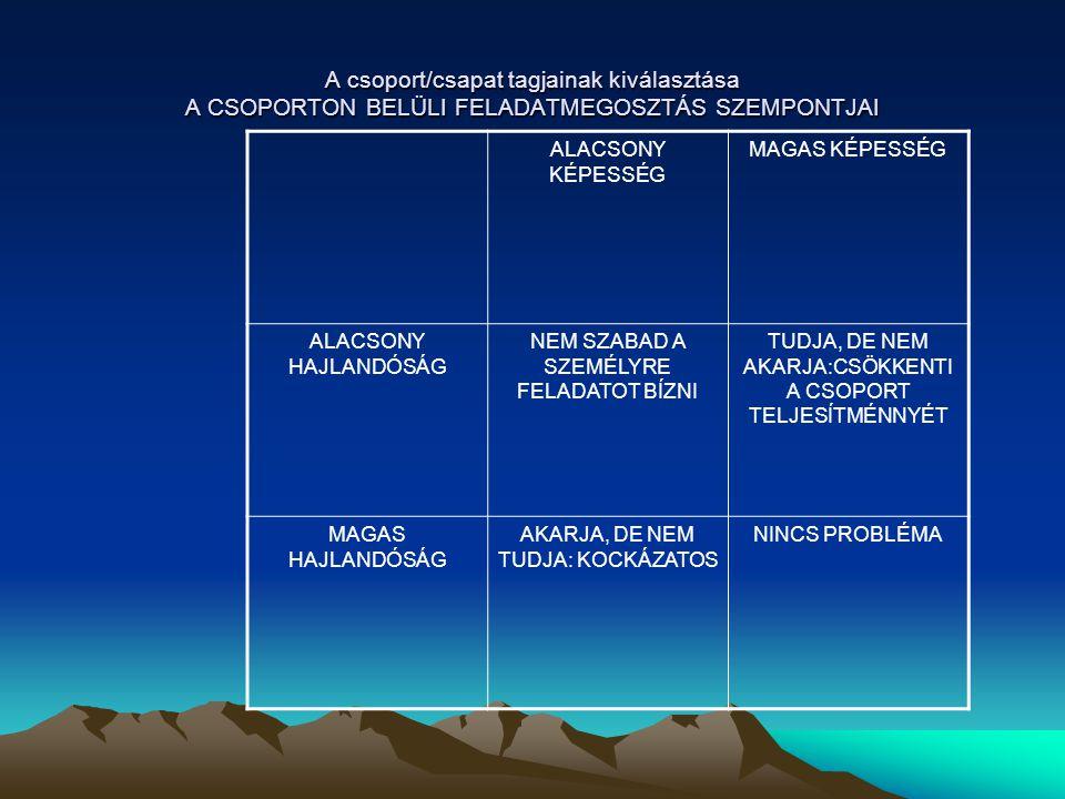 A csoport/csapat tagjainak kiválasztása A CSOPORTON BELÜLI FELADATMEGOSZTÁS SZEMPONTJAI