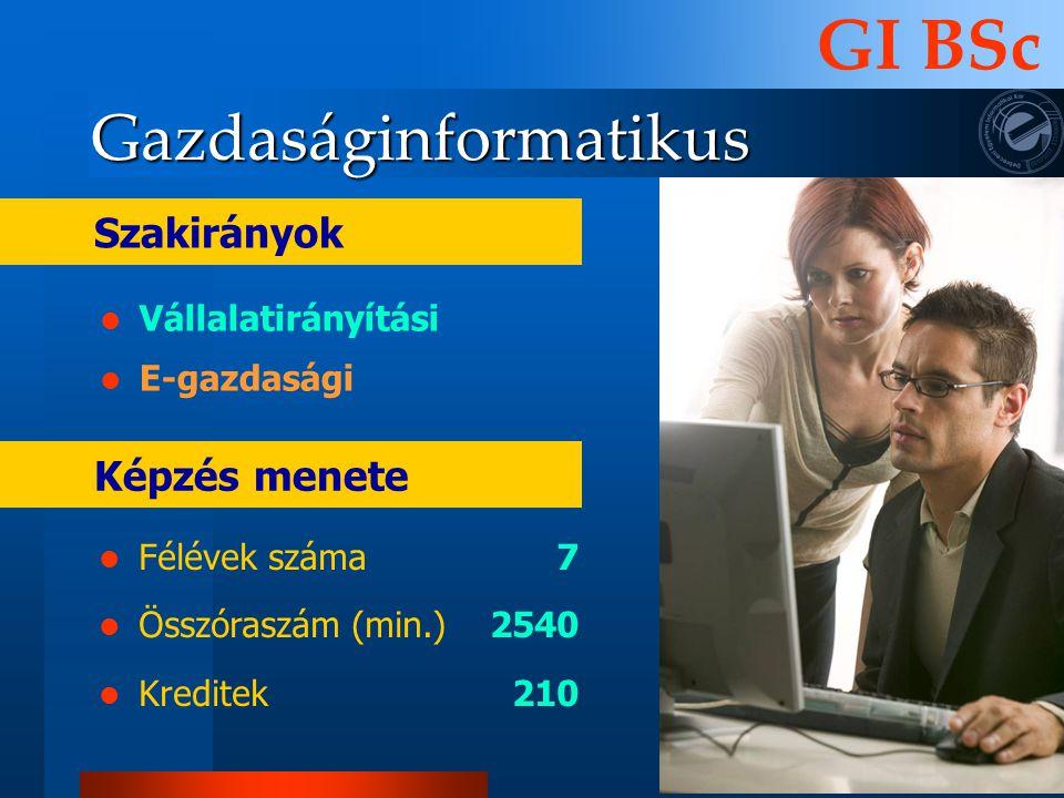 Gazdaságinformatikus