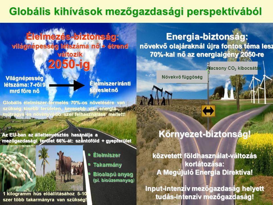 Globális kihívások mezőgazdasági perspektívából