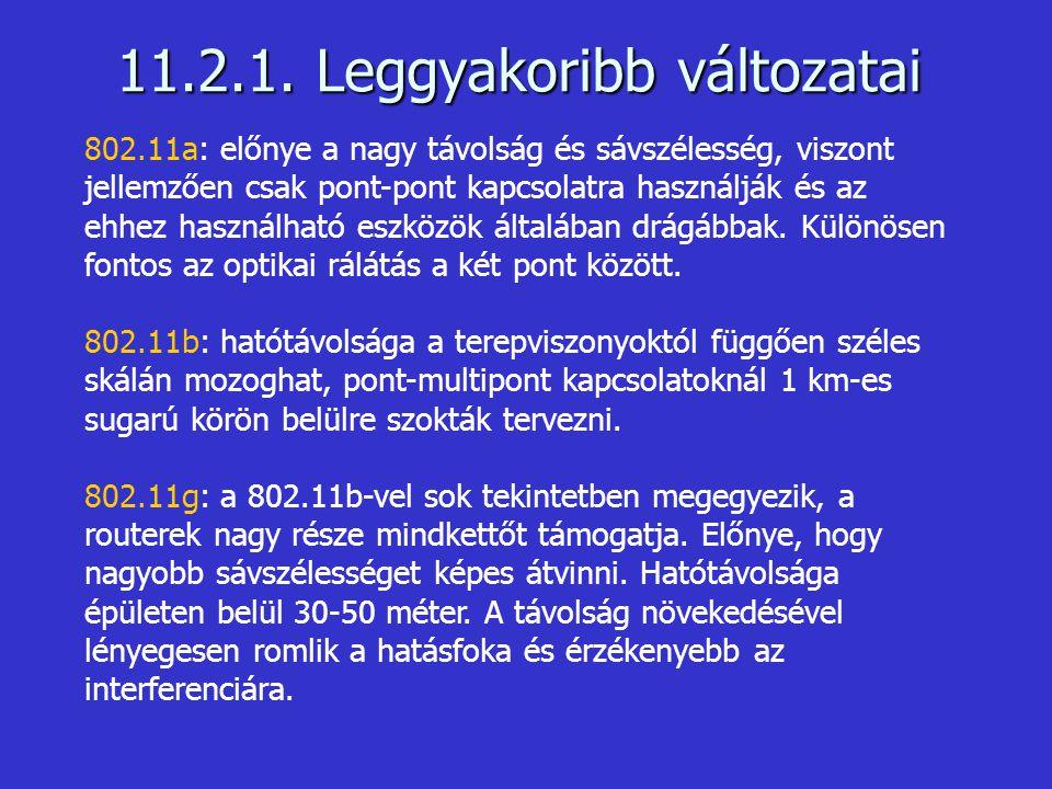 11.2.1. Leggyakoribb változatai