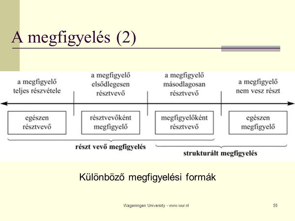 A megfigyelés (2) Különböző megfigyelési formák