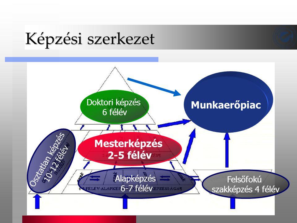 Képzési szerkezet Munkaerőpiac Mesterképzés 2-5 félév Doktori képzés