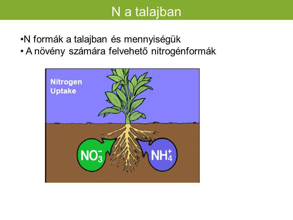 N a talajban N formák a talajban és mennyiségük