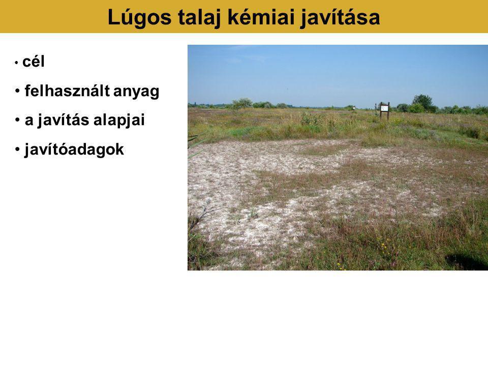 Lúgos talaj kémiai javítása