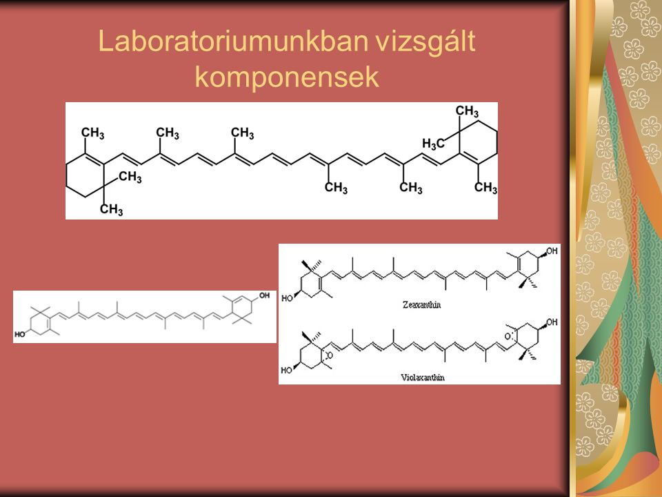 Laboratoriumunkban vizsgált komponensek