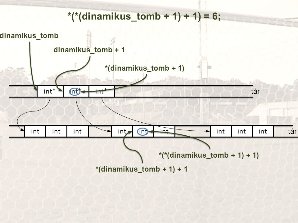 *(*(dinamikus_tomb + 1) + 1) = 6;