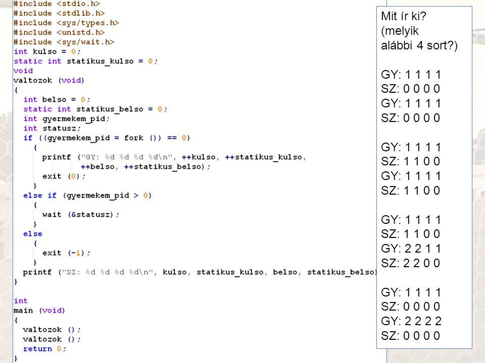 Laborkártyák Mit ír ki (melyik alábbi 4 sort ) GY: 1 1 1 1