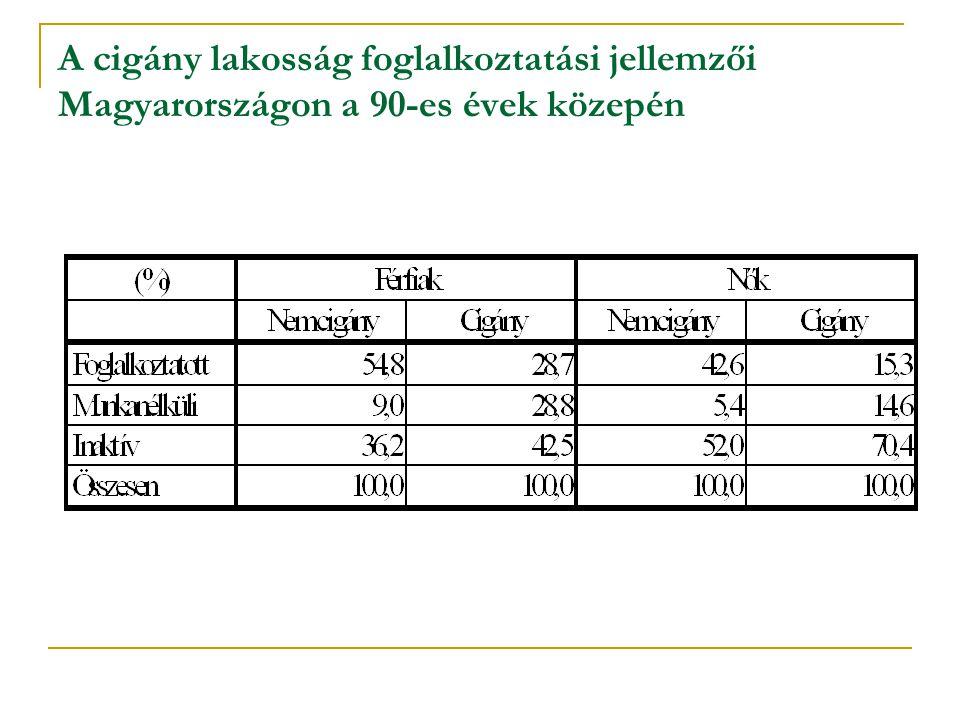 A cigány lakosság foglalkoztatási jellemzői Magyarországon a 90-es évek közepén