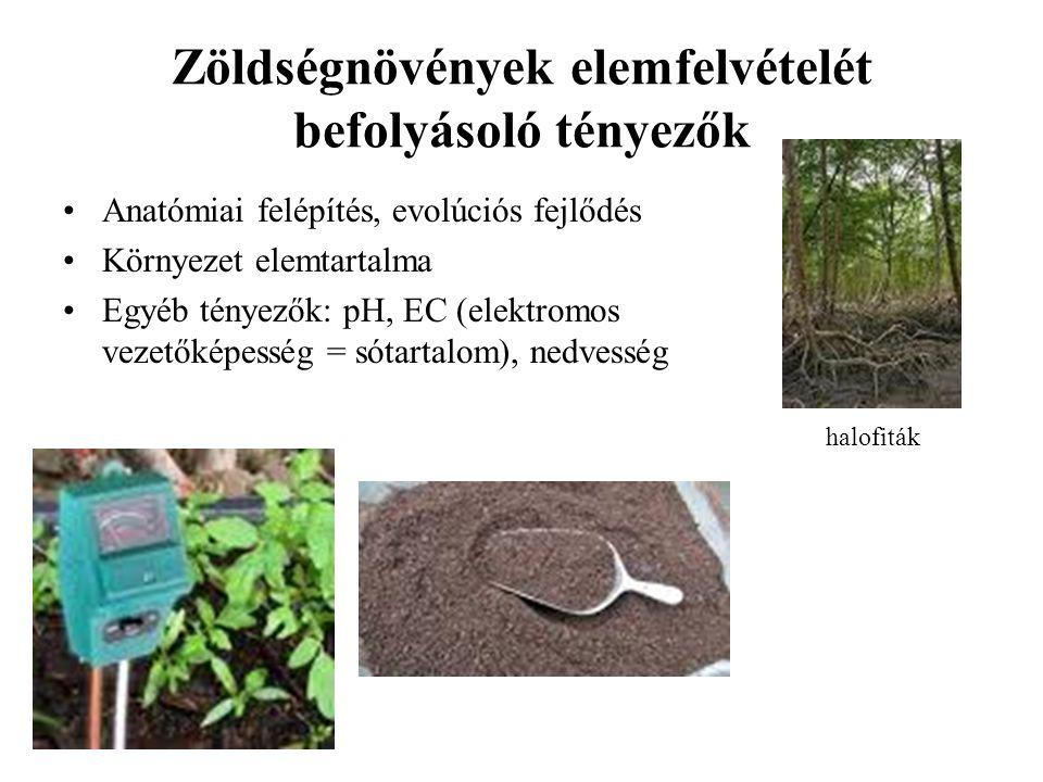 Zöldségnövények elemfelvételét befolyásoló tényezők