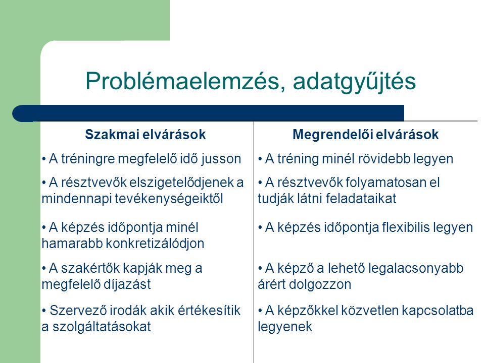 Problémaelemzés, adatgyűjtés