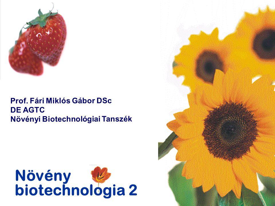 Növény biotechnologia 2