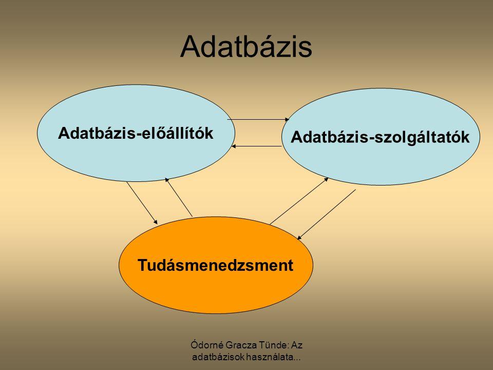 Adatbázis-előállítók Adatbázis-szolgáltatók