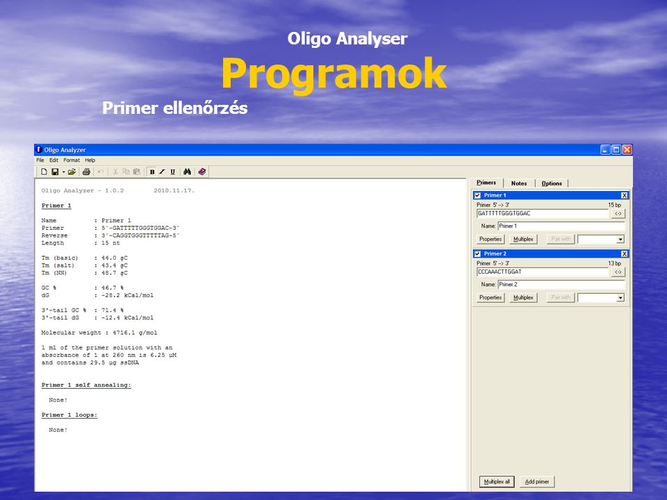 Programok Oligo Analyser Primer ellenőrzés