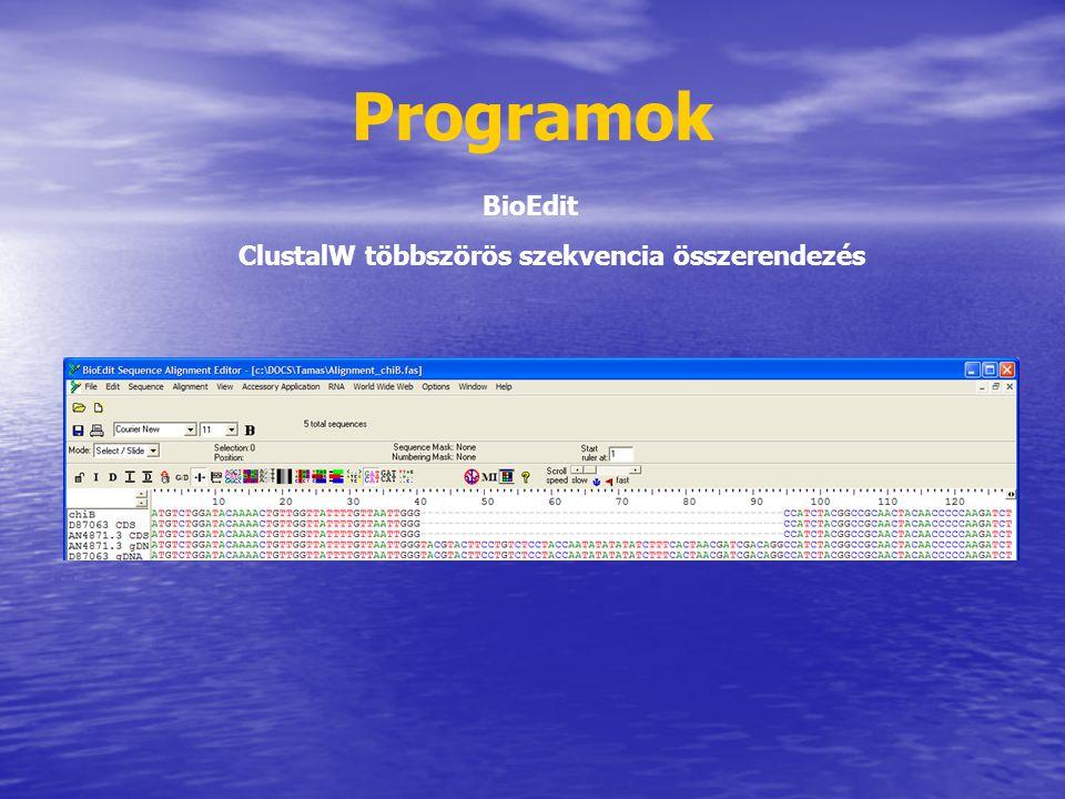 Programok BioEdit ClustalW többszörös szekvencia összerendezés