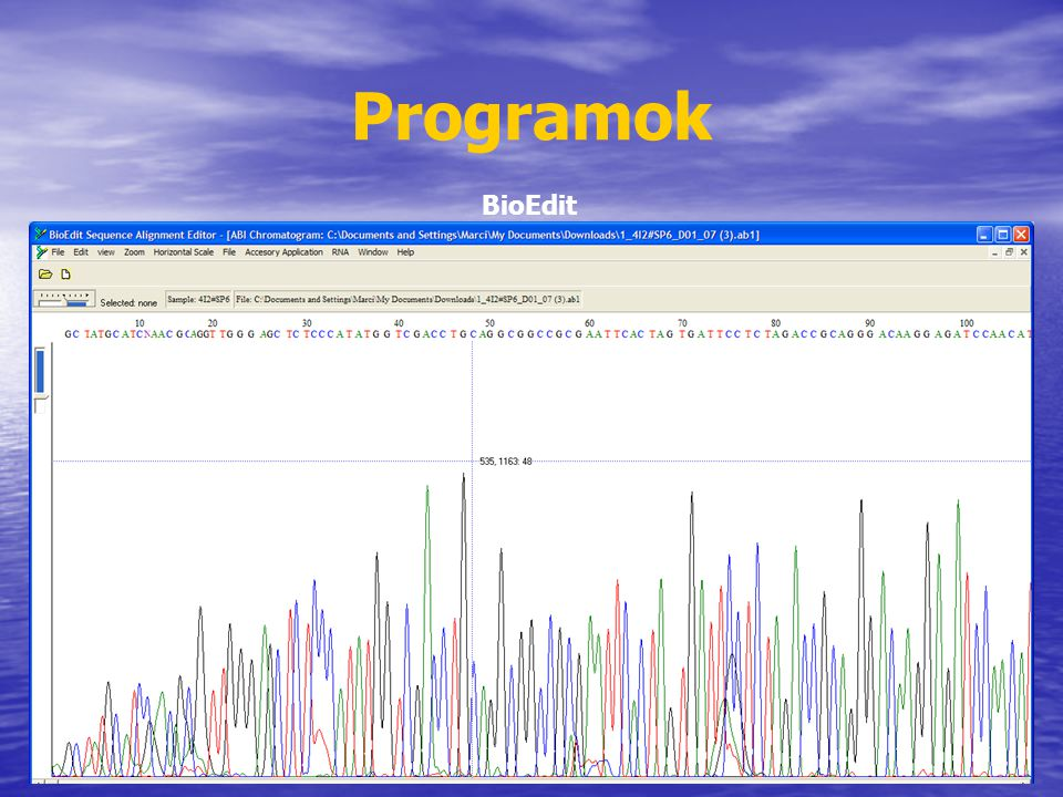 Programok BioEdit