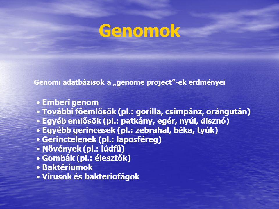 """Genomok Genomi adatbázisok a """"genome project -ek erdményei. Emberi genom. További főemlősök (pl.: gorilla, csimpánz, orángután)"""