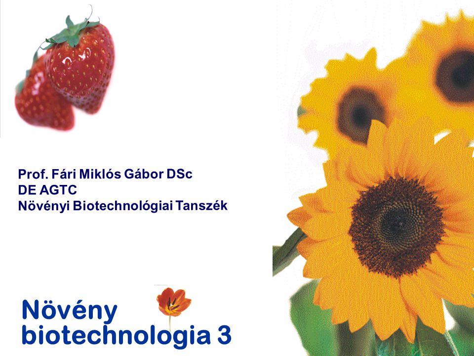 Növény biotechnologia 3