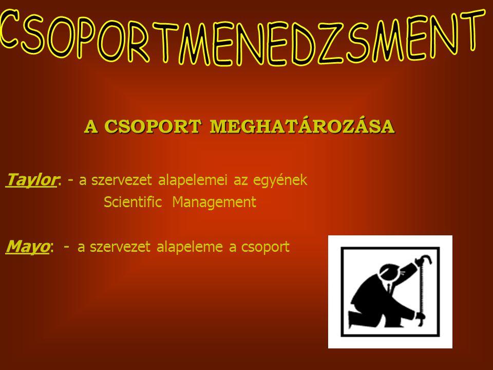 A CSOPORT MEGHATÁROZÁSA
