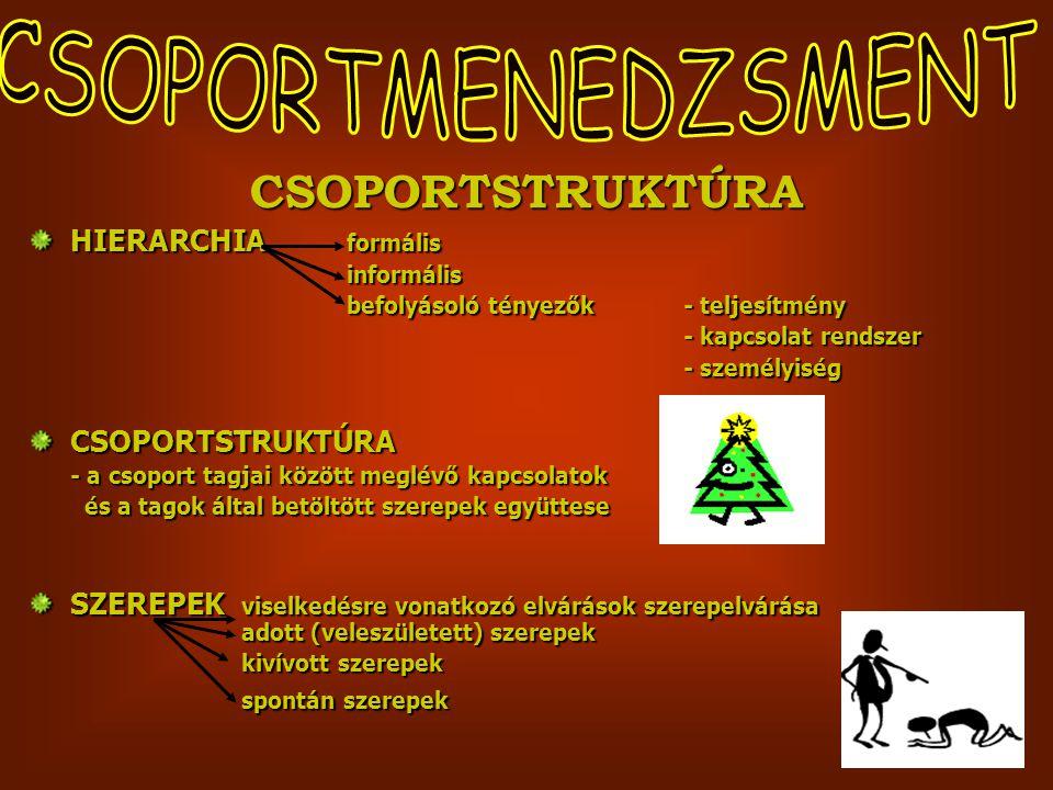 CSOPORTMENEDZSMENT CSOPORTSTRUKTÚRA HIERARCHIA formális