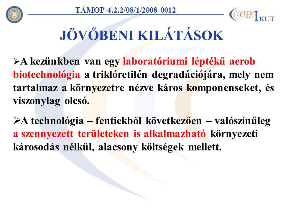 TÁMOP-4.2.2/08/1/2008-0012 JÖVŐBENI KILÁTÁSOK.