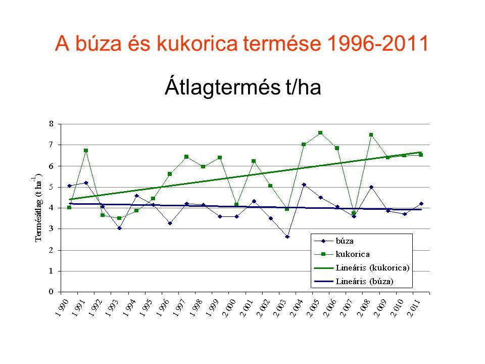 A búza és kukorica termése 1996-2011