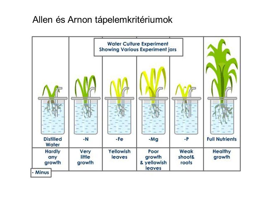 Allen és Arnon tápelemkritériumok