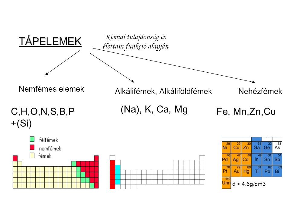 (Na), K, Ca, Mg C,H,O,N,S,B,P +(Si) Fe, Mn,Zn,Cu d > 4.6g/cm3 44