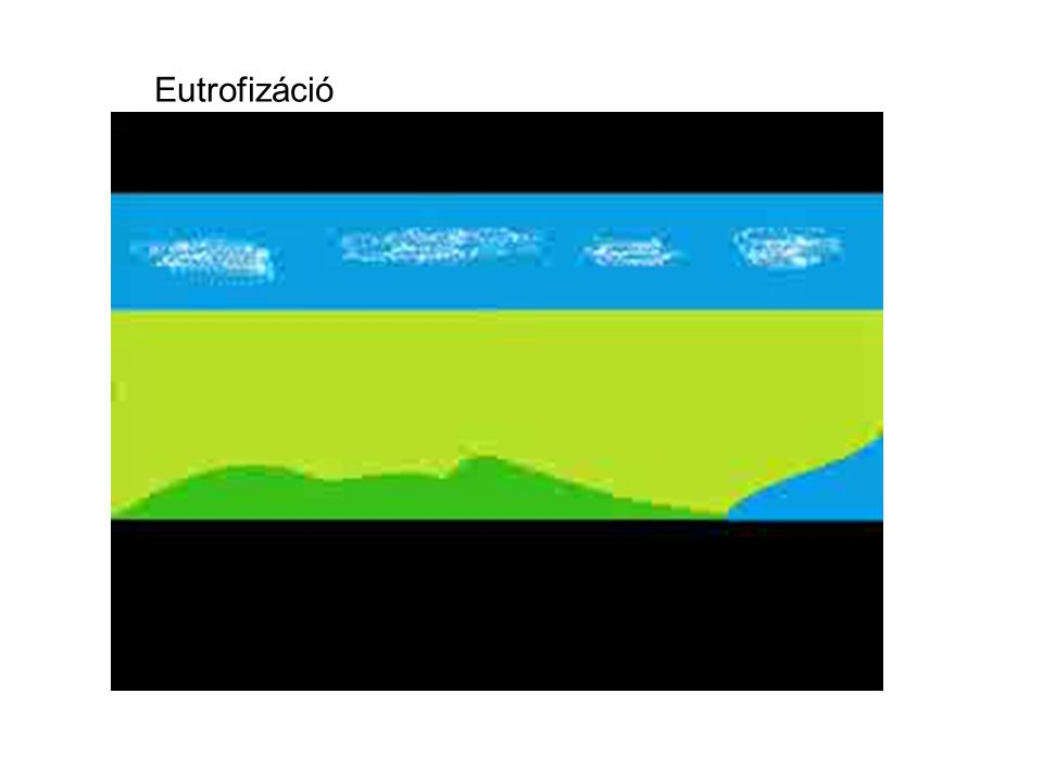 Eutrofizáció 12 12