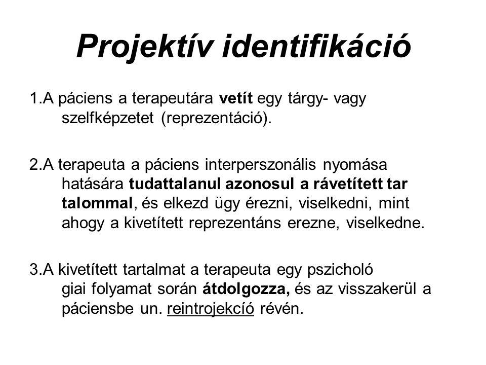 Projektív identifikáció