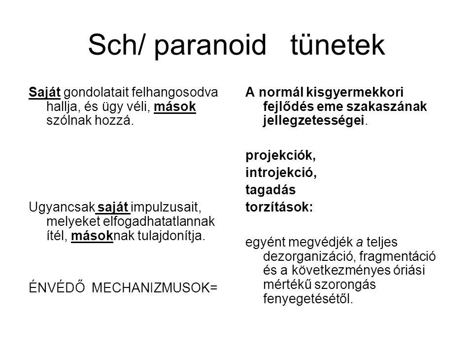 Sch/ paranoid tünetek Saját gondolatait felhangosodva hallja, és ügy véli, mások szólnak hozzá.