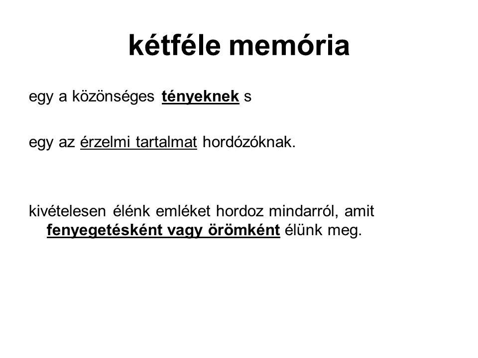 kétféle memória egy a közönséges tényeknek s