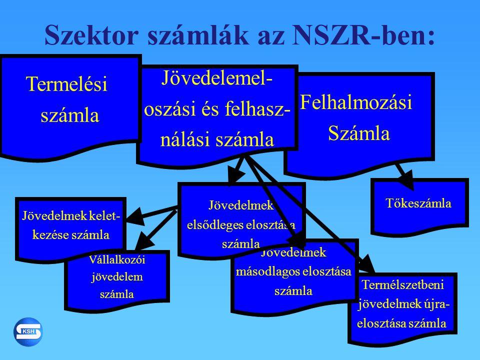 Szektor számlák az NSZR-ben:
