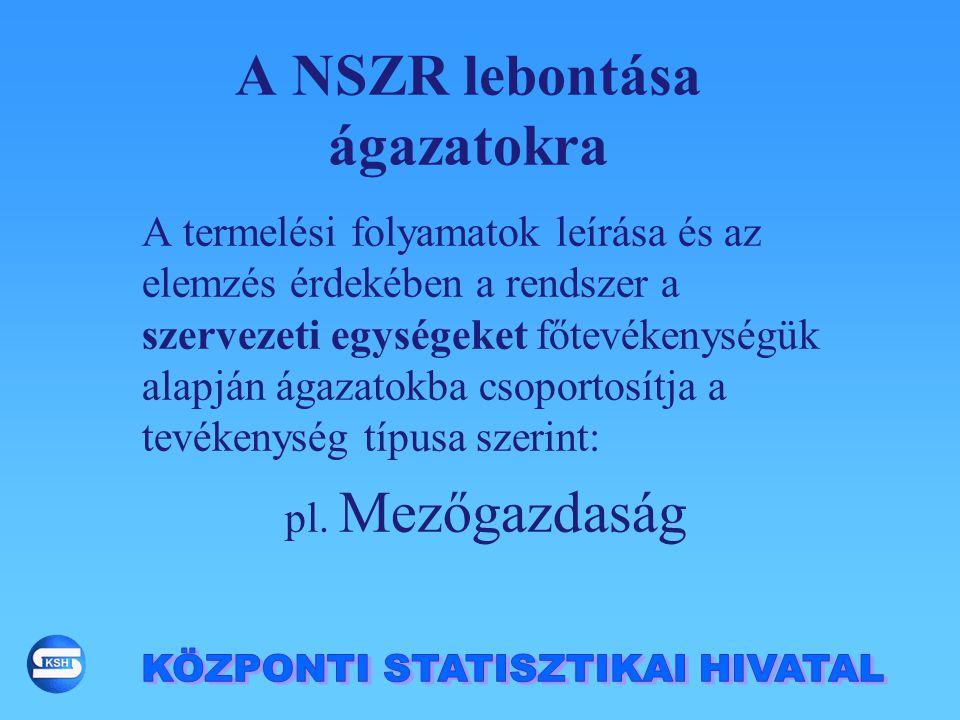A NSZR lebontása ágazatokra