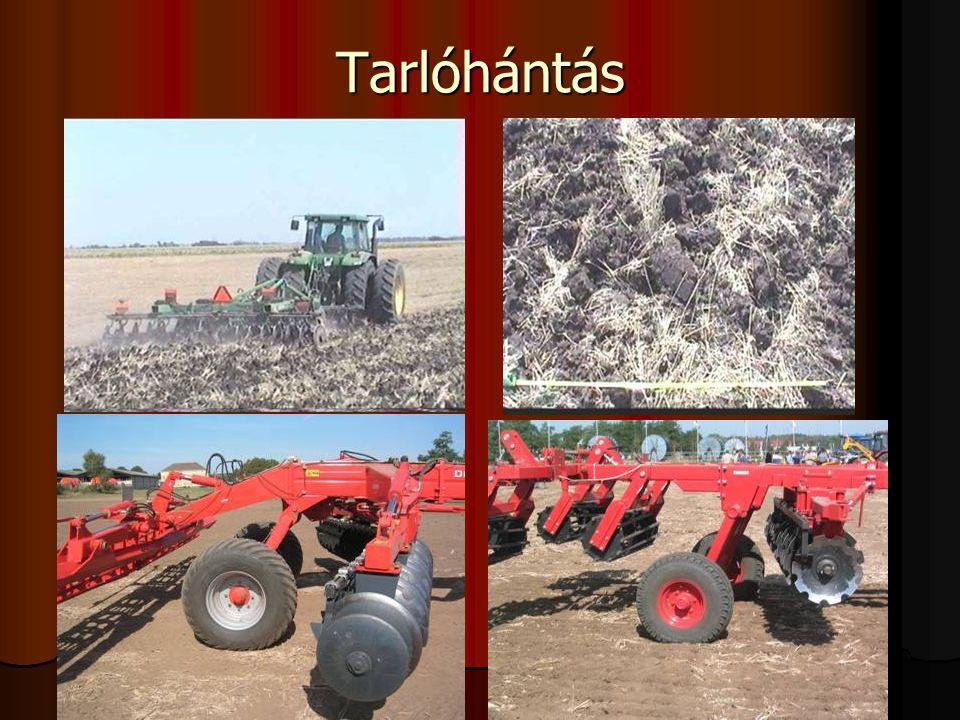 Tarlóhántás Tarlóhántás (tarlón végzett sekély talajmunka max. 10 cm)