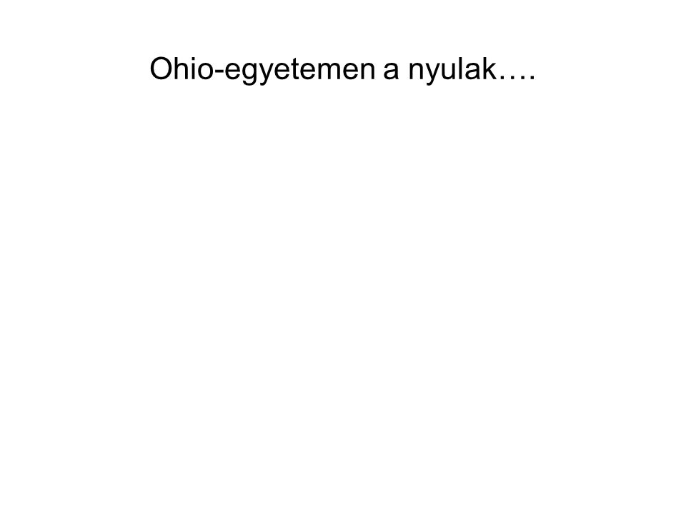 Ohio-egyetemen a nyulak….