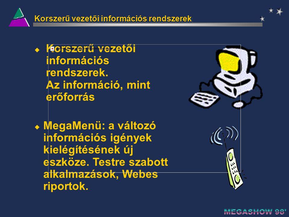 Korszerű vezetői információs rendszerek