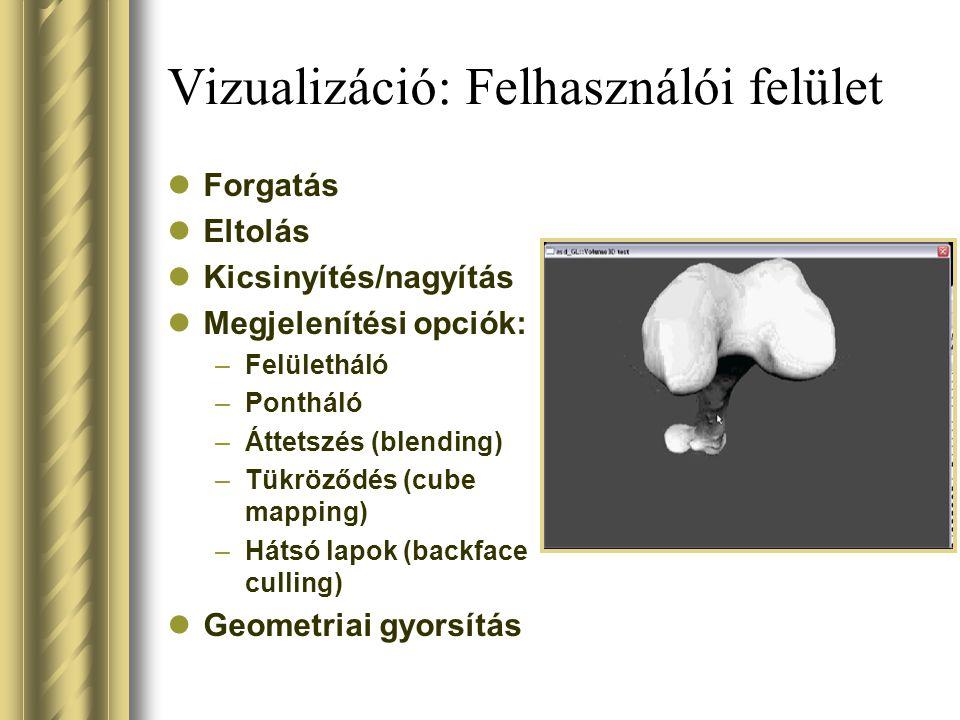 Vizualizáció: Felhasználói felület