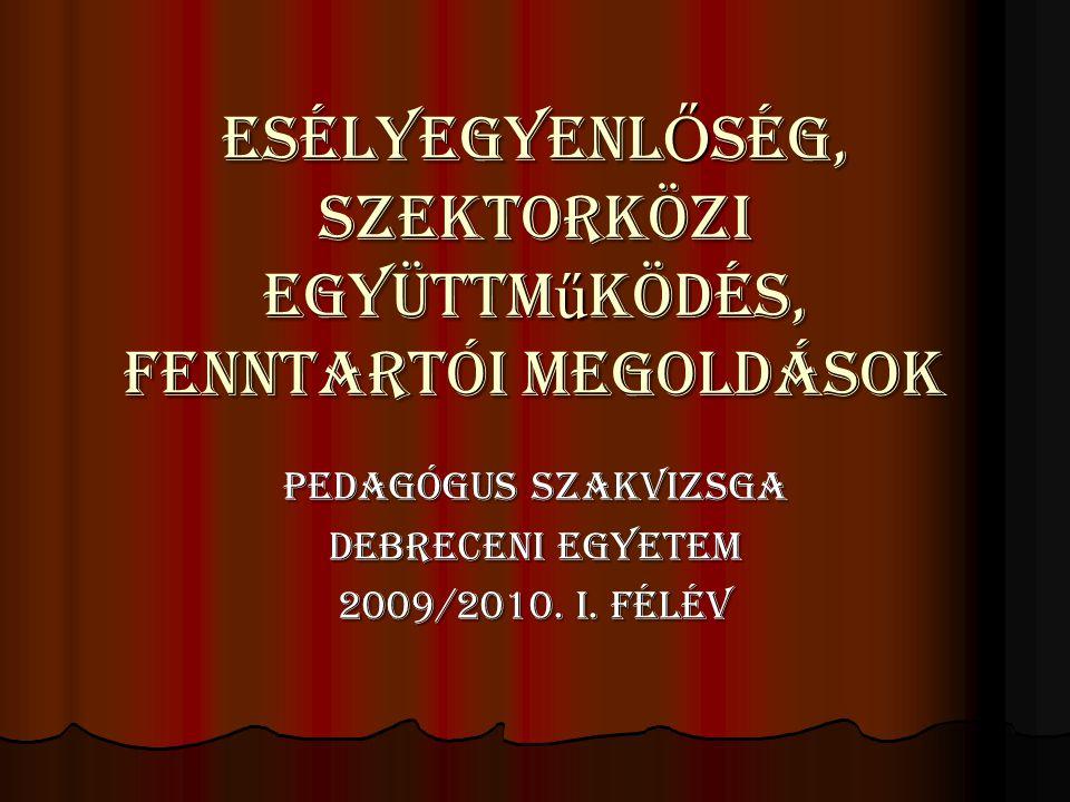 ESÉLYEGYENLŐSÉG, Szektorközi együttműködés, Fenntartói megoldások