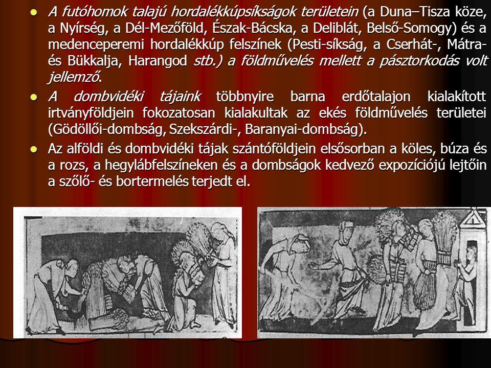 A futóhomok talajú hordalékkúpsíkságok területein (a Duna–Tisza köze, a Nyírség, a Dél-Mezőföld, Észak-Bácska, a Deliblát, Belső-Somogy) és a medenceperemi hordalékkúp felszínek (Pesti-síkság, a Cserhát-, Mátra- és Bükkalja, Harangod stb.) a földművelés mellett a pásztorkodás volt jellemző.