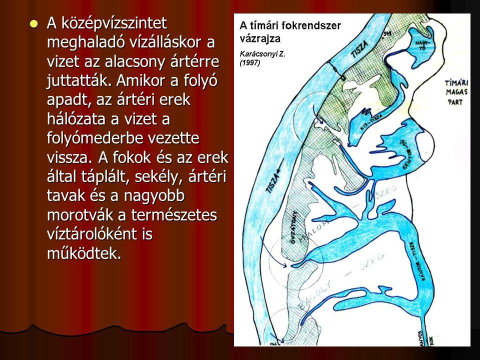 A középvízszintet meghaladó vízálláskor a vizet az alacsony ártérre juttatták.