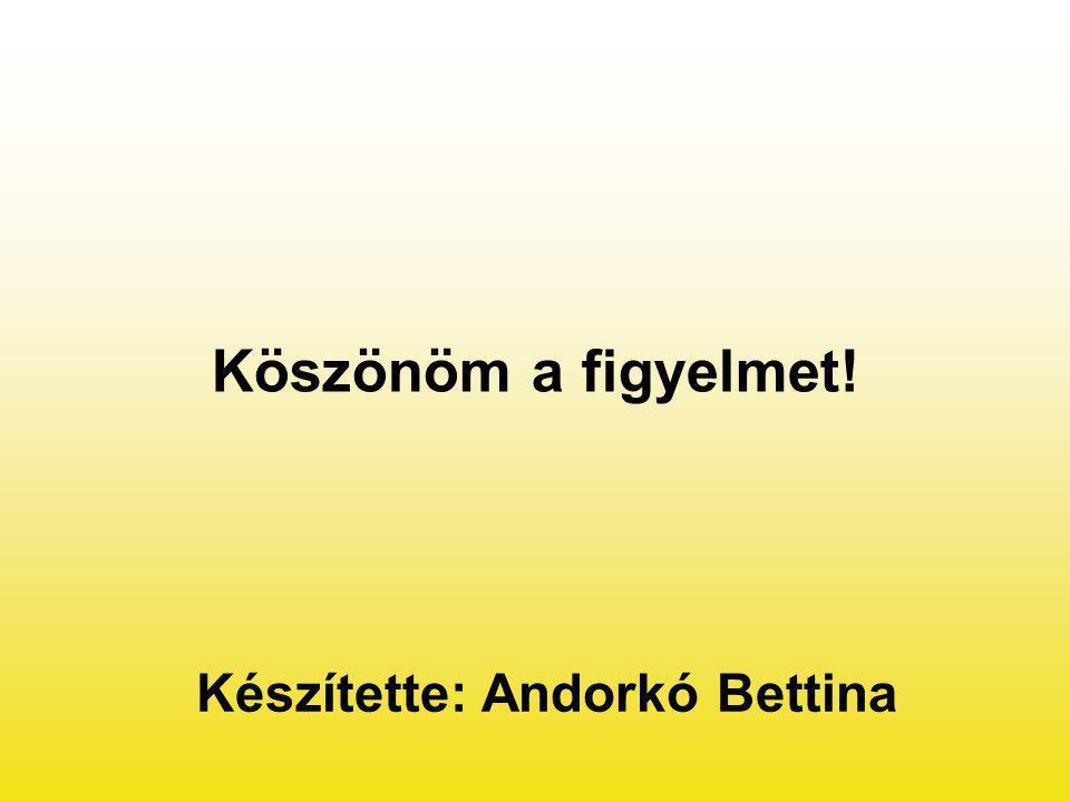 Készítette: Andorkó Bettina