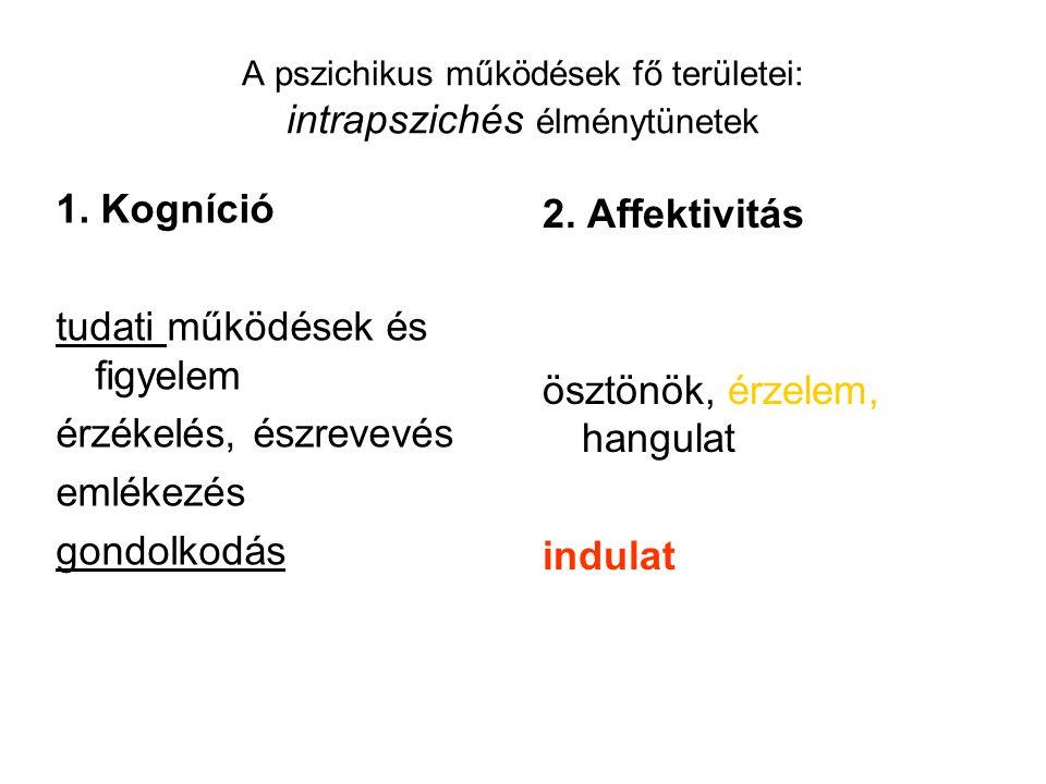 A pszichikus működések fő területei: intrapszichés élménytünetek
